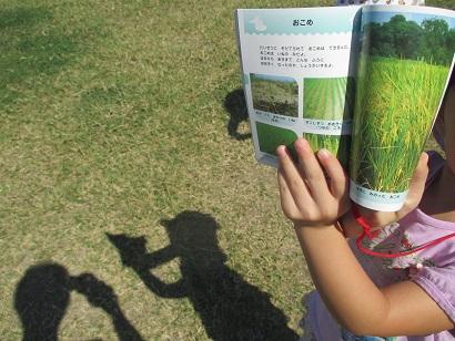 ひがし保育園 ブログ 4歳児 隣の公園